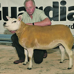 North West Texel Breeders Show and Sale